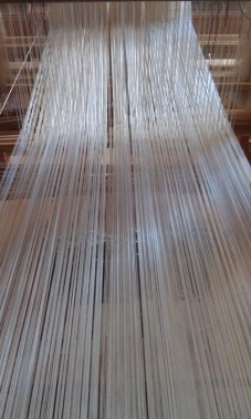 Drawloom, looking at warp from back to front of loom.