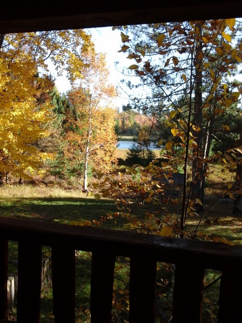 My view of the lake and autumn trees.