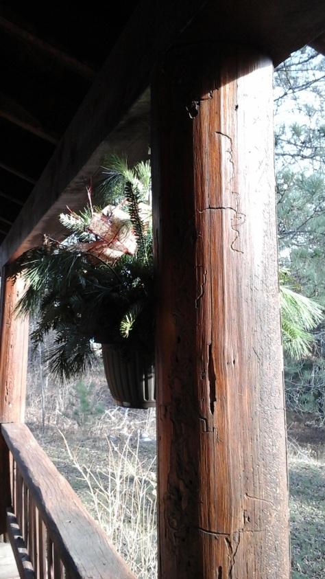 Pine bough hanging pot.